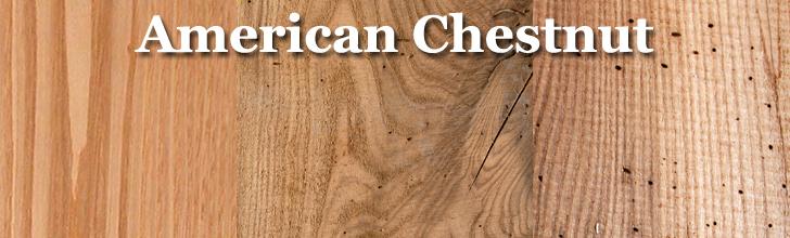 american chestnut lumber