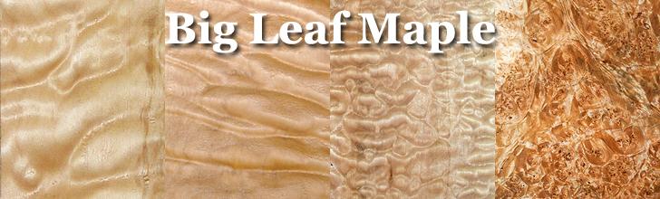 big leaf maple wood