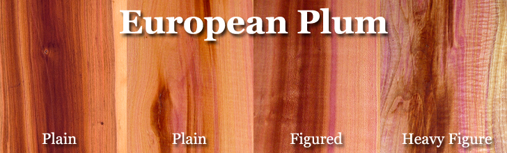 european plum wood