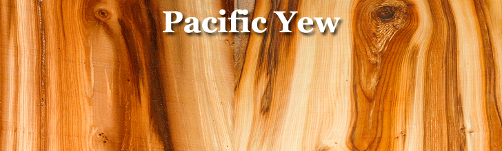pacific yew wood