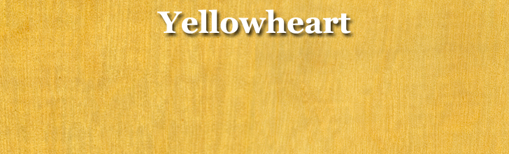 yellowheart wood