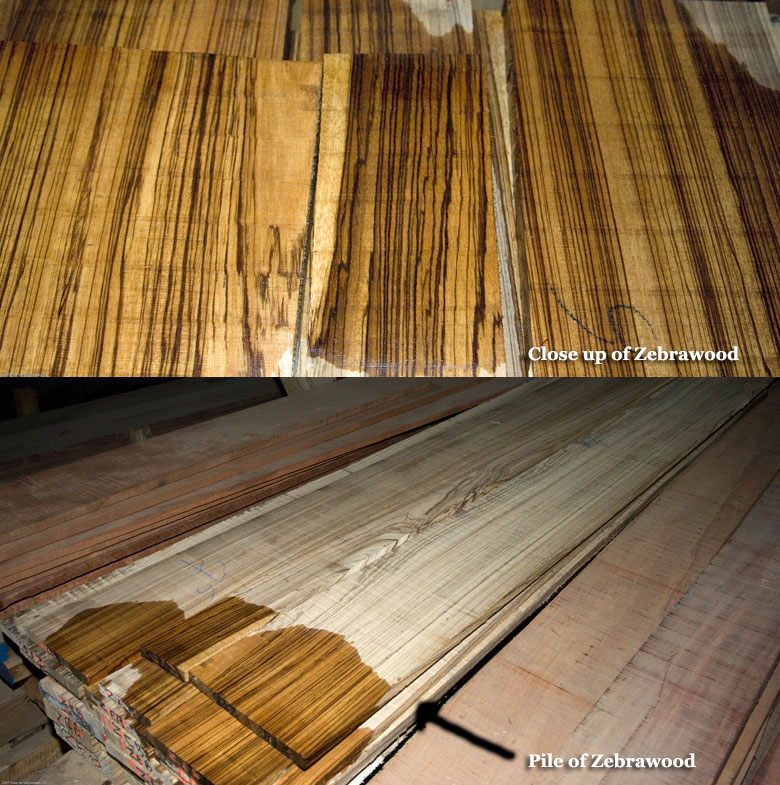 zebrawood sample images