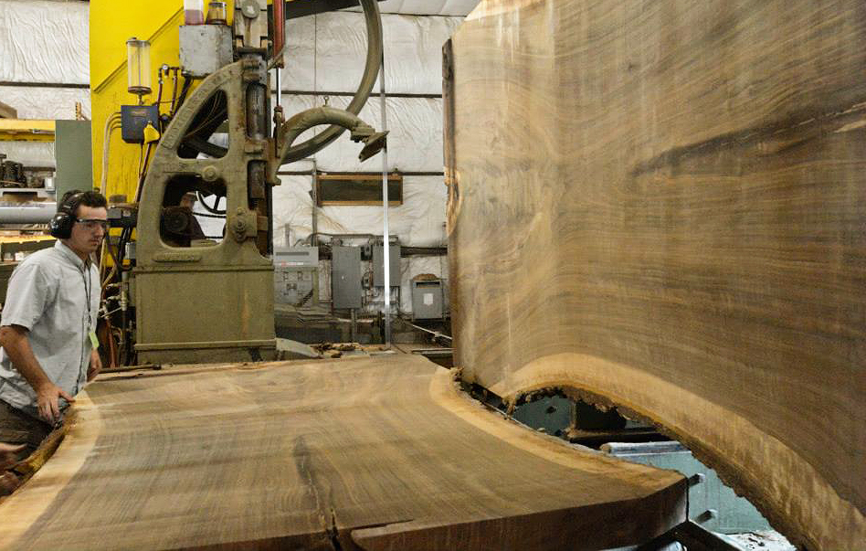 Sawing Black Walnut at Hearne Hardwoods Inc.