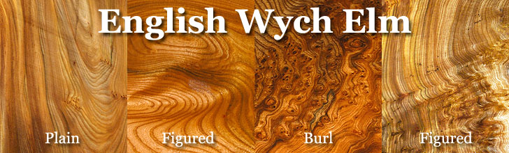 buy english wych elm wood at hearne hardwoods inc