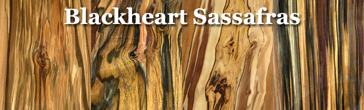 buy blackheart sassafras wood at hearne hardwoods inc